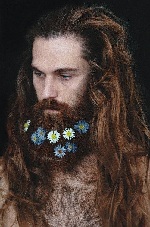 цветочные композиции с бородой Украина