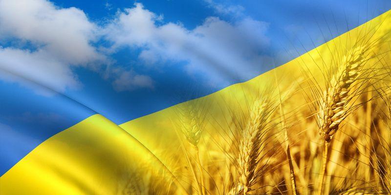 День Независимости Украины 25 лет