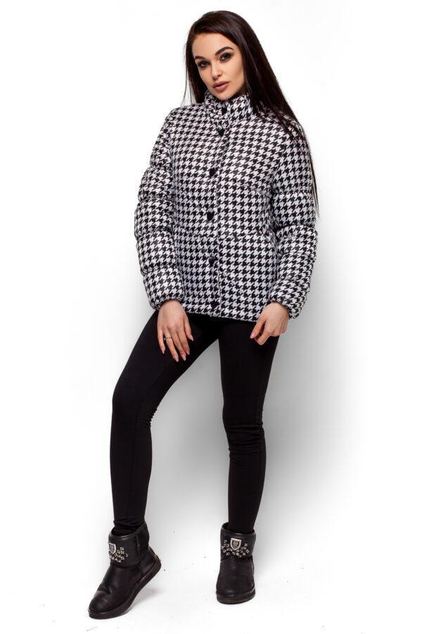 Куртка Нита Комбинированный Karree